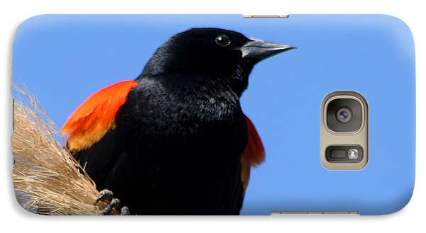 Galaxy Case featuring the photograph Red-winged Blackbird by Bob and Jan Shriner