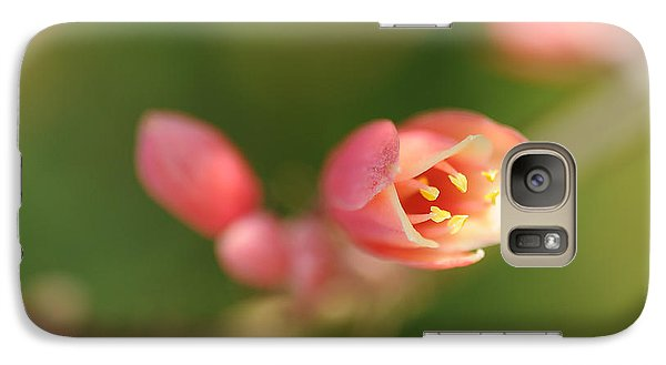 Galaxy Case featuring the photograph Red Yucca Flower by Sherry Davis