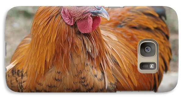 Galaxy Case featuring the photograph Reddy Rooster by Jenessa Rahn