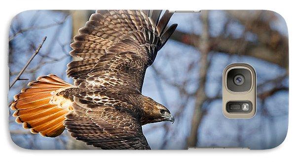 Redtail Hawk Galaxy S7 Case by Bill Wakeley