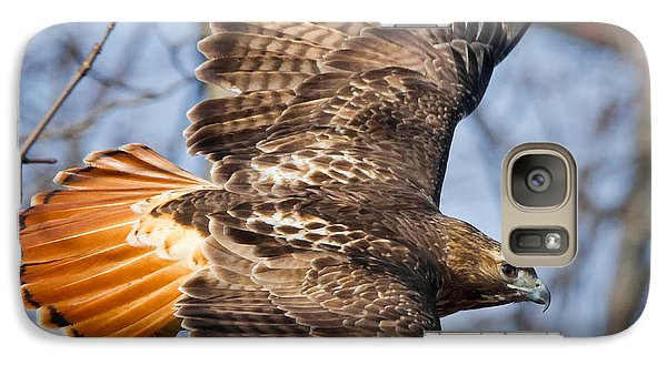 Redtail Hawk Square Galaxy S7 Case by Bill Wakeley