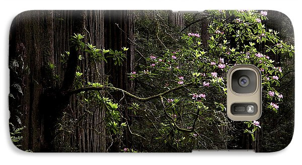 Galaxy Case featuring the photograph Redwoods And Rhodys by Betty Depee