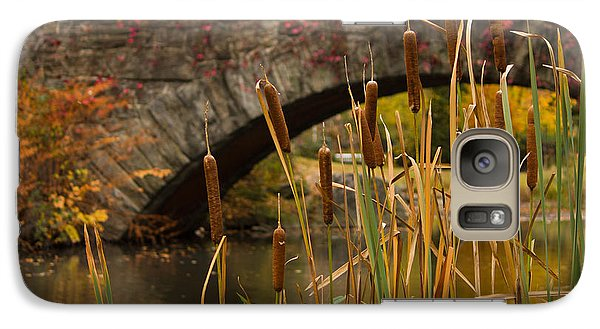 Galaxy Case featuring the photograph Reeds And Gapstow Bridge by Jose Oquendo