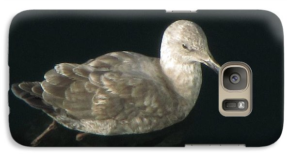 Galaxy Case featuring the photograph Refections Of A Gull by Jennifer Wheatley Wolf
