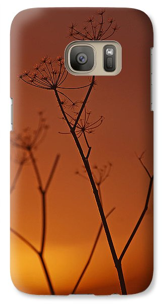 Galaxy Case featuring the photograph Regal Old Queen by Jani Freimann