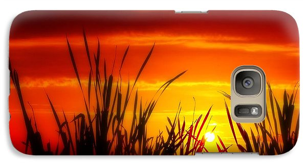 Galaxy Case featuring the photograph Reservoir Sunset Tall Grass by Jim Albritton