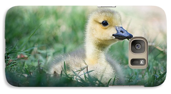 Galaxy Case featuring the photograph Rest by Priya Ghose