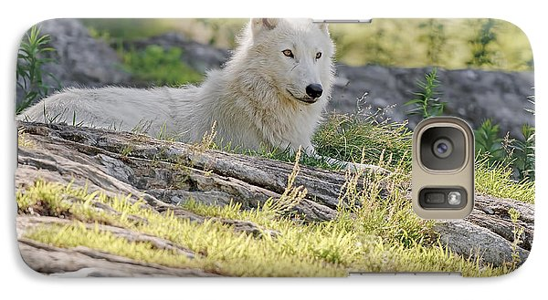 Galaxy Case featuring the photograph Resting Arctic Wolf by Wolves Only