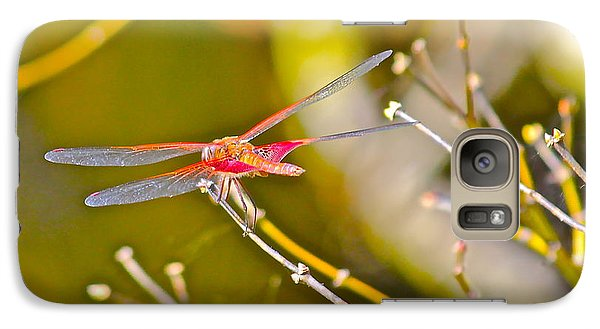 Galaxy Case featuring the photograph Resting Red Dragonfly by Cyril Maza