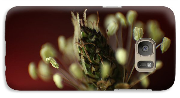 Galaxy Case featuring the photograph Ribwort Plantain  by Eden Baed