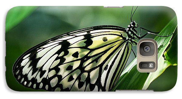 Galaxy Case featuring the photograph Rice Paper Butterfly by Zoe Ferrie