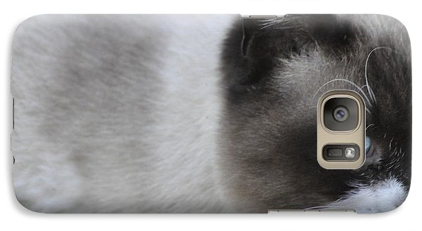 Galaxy Case featuring the photograph Ringtail by Sarah McKoy