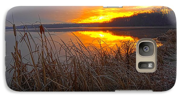 Galaxy Case featuring the photograph Rising Sunlights Up Shore Line Of Cattails by Randall Branham