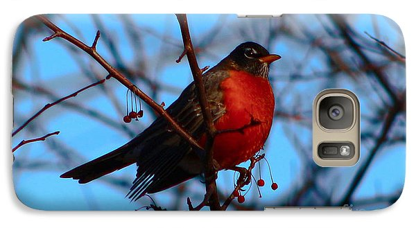 Galaxy Case featuring the photograph Robin by Gena Weiser
