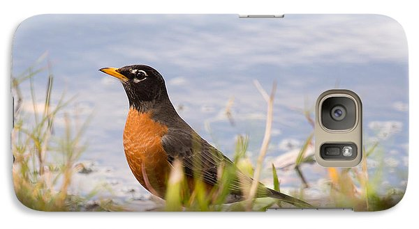 Galaxy Case featuring the photograph Robin Viewing Surroundings by John M Bailey