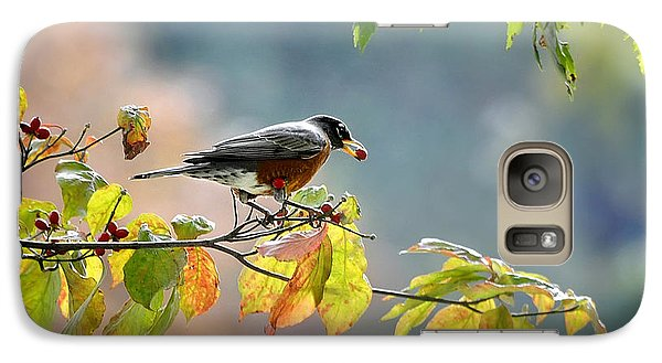 Galaxy Case featuring the photograph Robin With Red Berry by Nava Thompson