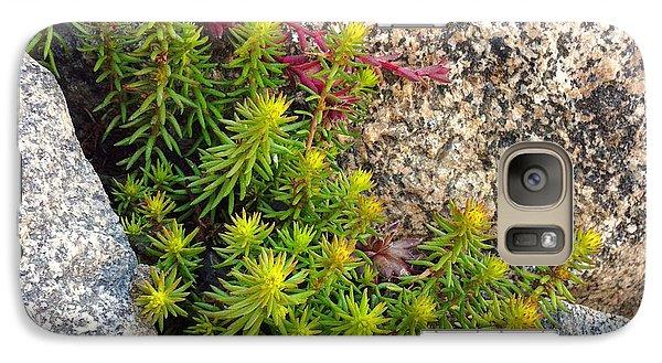 Galaxy Case featuring the photograph Rock Flower by Meghan at FireBonnet Art