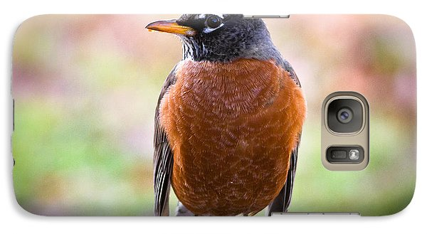 Galaxy Case featuring the photograph Rock-n-robin by Annette Hugen