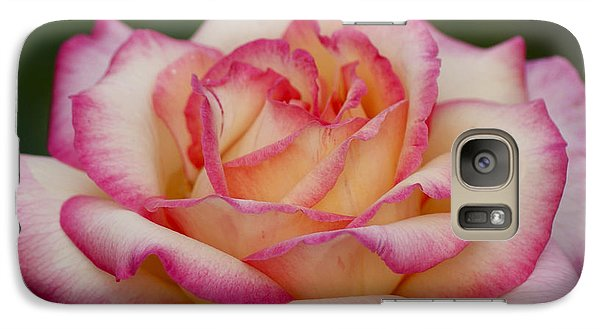 Galaxy Case featuring the photograph Rose Beauty by Debby Pueschel