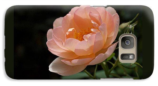 Rose Blush Galaxy S7 Case