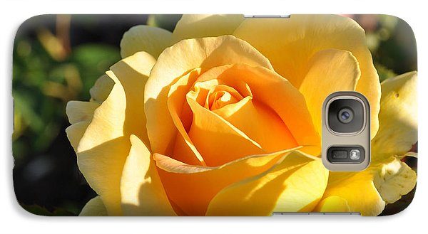 Galaxy Case featuring the photograph Rose - Honey Bouquet by Sabine Edrissi