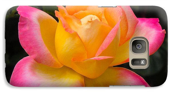 Galaxy Case featuring the photograph Rose by Janis Knight