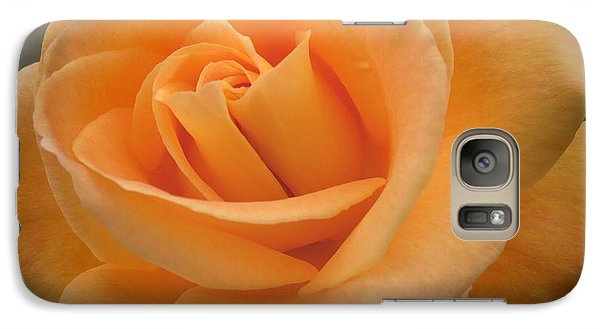 Galaxy Case featuring the photograph Rose by Laurel Powell