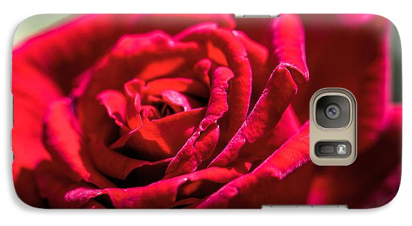 Galaxy Case featuring the photograph Rose by Leif Sohlman