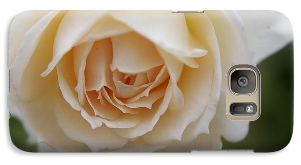 Galaxy Case featuring the photograph Rose... Pure And Simple  by Lynn England