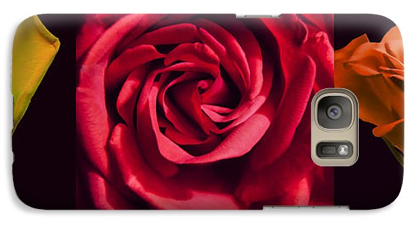 Galaxy Case featuring the photograph Rose Triad I by John Hansen