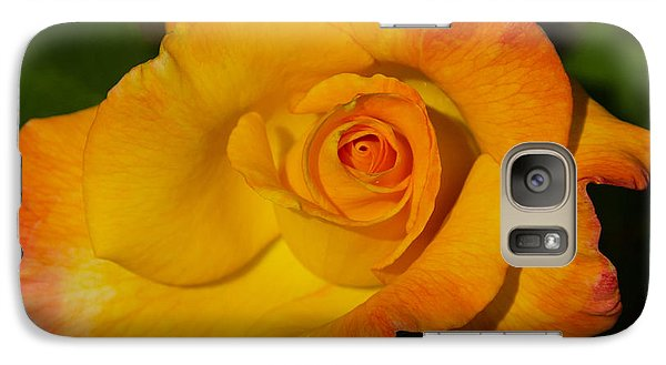 Galaxy Case featuring the photograph Rose Yellow Red by Debby Pueschel