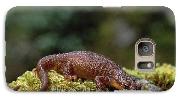 Rough-skinned Newt Oregon Galaxy Case by Gerry Ellis