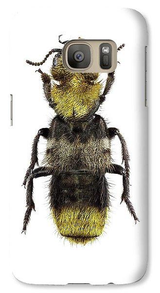 Rove Beetle Galaxy S7 Case