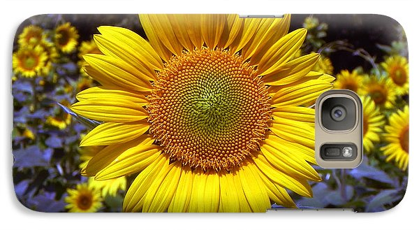 Galaxy Case featuring the photograph Roxanna Sunflower by Bill Swartwout