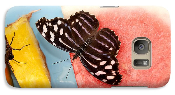 Galaxy Case featuring the photograph Royal Blue Butterfly by Eva Kaufman