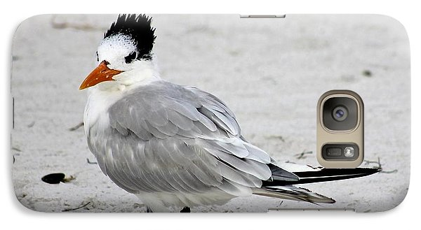 Galaxy Case featuring the photograph Royal Tern - Adult Nonbreeding by Jeanne Kay Juhos