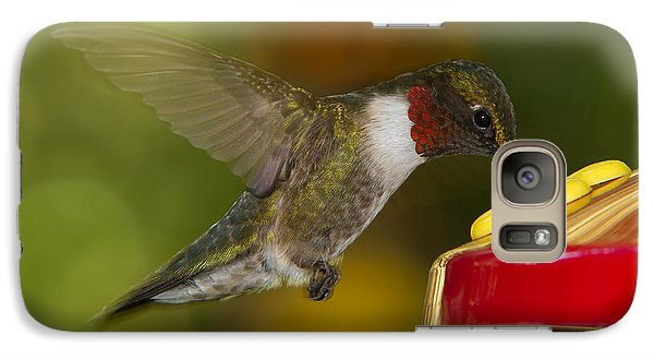 Galaxy Case featuring the photograph Ruby-throat Hummer Sipping by Robert L Jackson