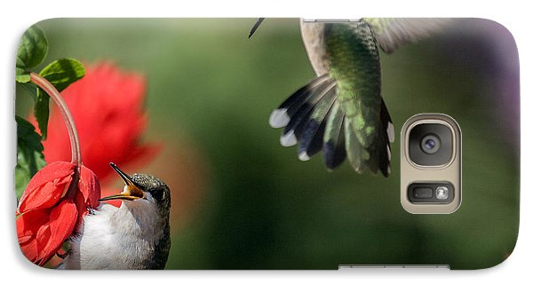 Galaxy Case featuring the photograph Ruby-throated Hummingbirds by David Lester