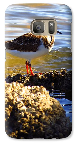 Galaxy Case featuring the photograph Ruddy Turnstone  by Phyllis Beiser