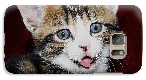 Galaxy Case featuring the photograph Rude Kitten by Terri Waters