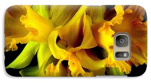 Galaxy Case featuring the photograph Ruffled Daffodils by Marianne Dow