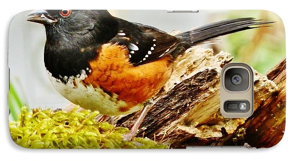 Galaxy Case featuring the photograph Spotted Towhee by VLee Watson