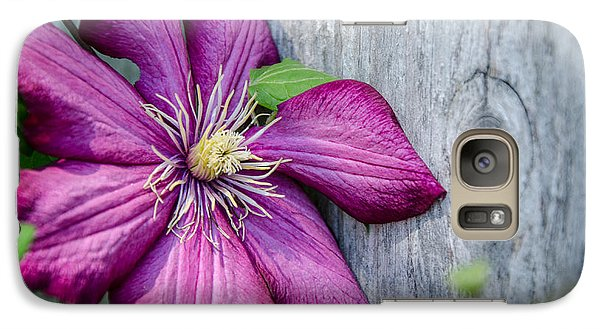 Galaxy Case featuring the photograph Rustic Clematis by Susan  McMenamin