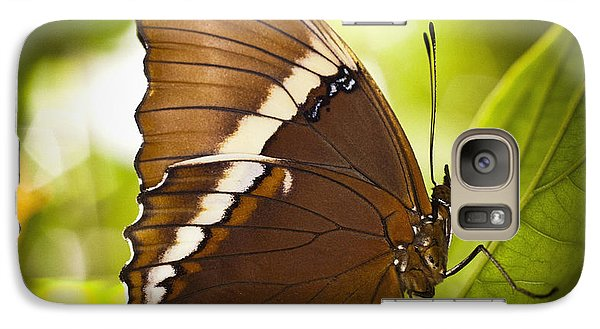 Galaxy Case featuring the photograph Rusty Tip Butterfly by Bradley R Youngberg