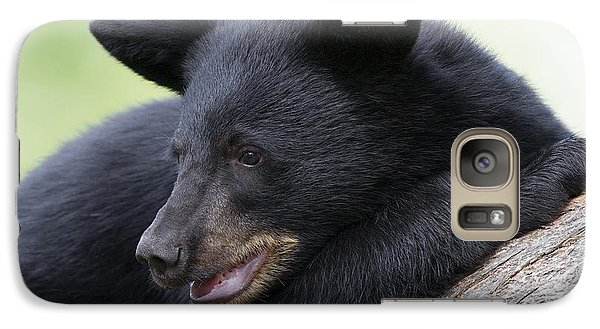 Galaxy Case featuring the photograph Safe From Above by Gerry Sibell