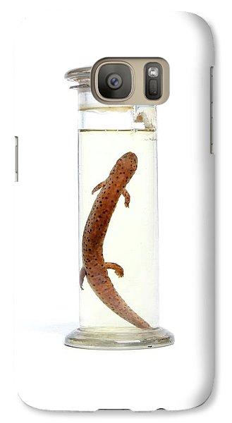 Salamanders Galaxy S7 Case - Salamander by Gregory Davies