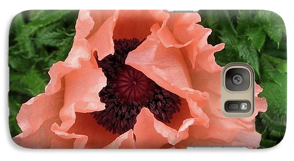 Galaxy Case featuring the photograph Salmon Colored Poppy by Barbara Griffin