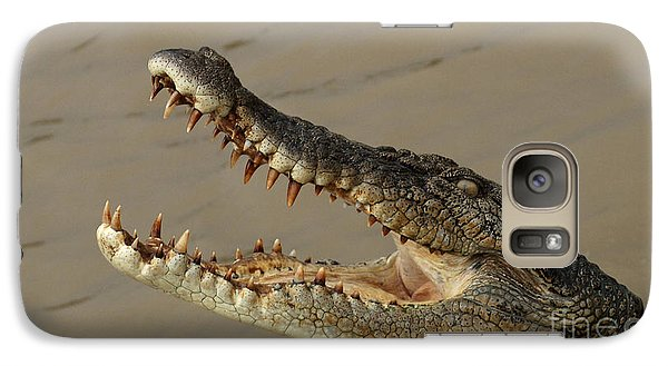 Salt Water Crocodile 1 Galaxy Case by Bob Christopher