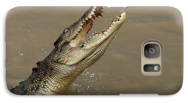Salt Water Crocodile Australia Galaxy Case by Bob Christopher