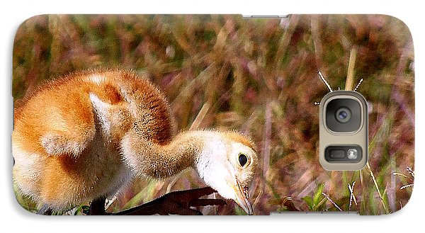 Galaxy Case featuring the photograph Sand-hill Chick Scratching  by Chris Mercer
